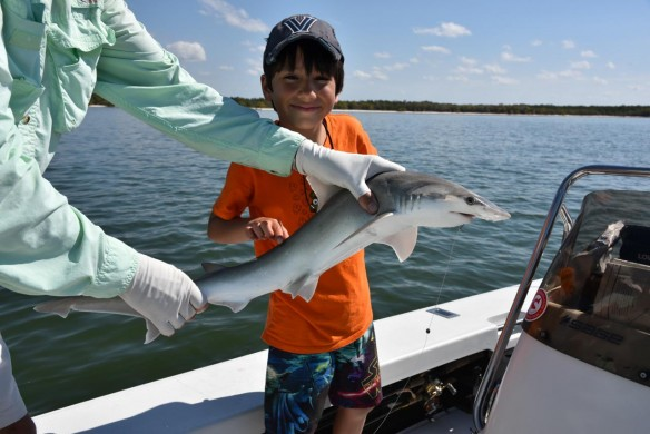 Flats Fishing Everglades