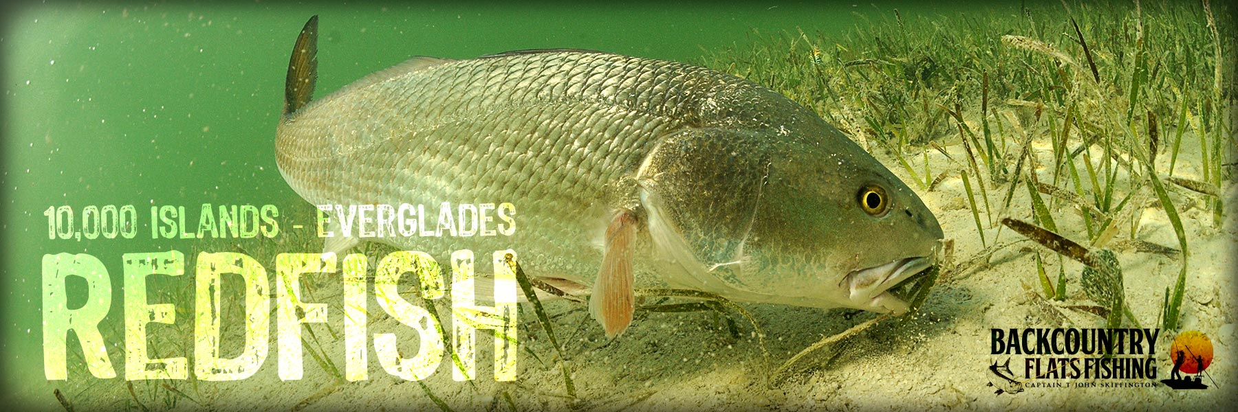 Charters for Redfish Everglades
